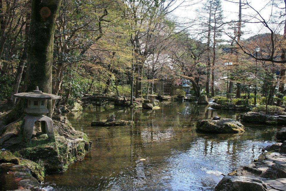 Gifu8